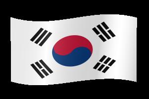 8 south-korea-flag-waving-xl