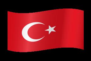 13 turkey-flag-waving-xl